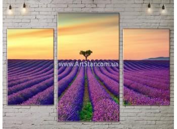 Модульные картины пейзажи, Art. NATA777125