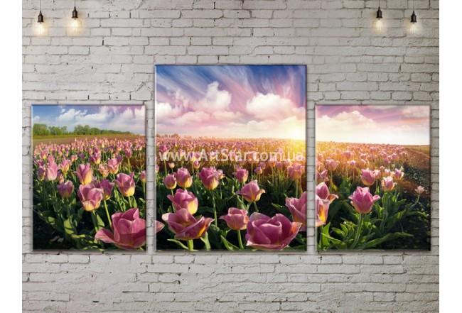 Модульные картины пейзажи, Art. NATA777135