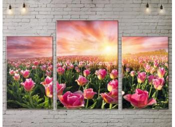 Модульные картины пейзажи, Art. NATA777137