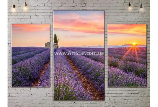 Модульные картины пейзажи, Art. NATA777153