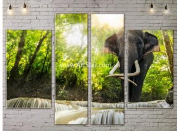 Модульные картины пейзажи, Art. NATA777213