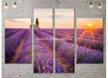 Модульные картины пейзажи, Art. NATA777257